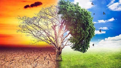 CAUSAS Y EFECTOS DEL CAMBIO CLIMÁTICO