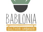 Jardineria, Techos Verdes, Babilonia Cultivos Merida