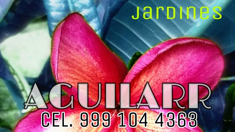 Jardinero, Servicio Mantenimiento de Jardin. Juan Carlos Aguilar Merida